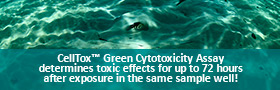 CellTox Green Dye-photostable and non toxic