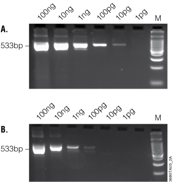Two-step RT-PCR with simple addition of Taq DNA Polymerase and gene-specific primers to the original 20 microliters RT volume.