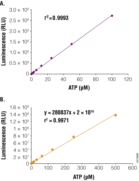 Luminescent output correlates with amount of ATP.