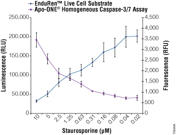Multiplexing the EnduRen Live Cell Substrate and Apo-ONE Homogeneous Caspase-3/7 Assays.